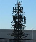 Torre feito-à-medida das telecomunicações da câmara de ar da palma/pinho