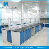 화학에 의하여 사용되는 금속 강철 실험실 가구