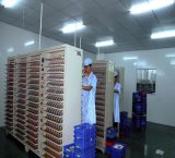 Exc703443 3.7V 1100mAh Lithium-Plastik-nachladbare Batterie