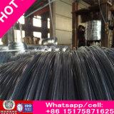 Reicher galvanisierter Stahldraht mit Durchmessern 0.3 bis 4mm verwendetes Gestell für Verkauf