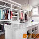 Wardrobe do OEM & do ODM de Foshan (BY-W-161)