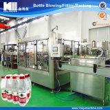 Impianto di imbottigliamento dell'acqua minerale del re Machine Complete Pure