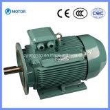 Широко используемое главное качество электрический двигатель 3 участков асинхронный