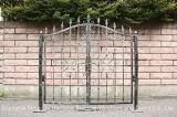 Нержавеющая сталь горячая - гальванизированные старые двери утюга