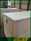 Contre-plaqué stratifié par placage blanc d'ingénieur pour des meubles