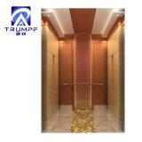 Extravagante y elevador de pasajeros en el interior Uesd