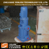 Pompe centrifuge à plusieurs étages verticale de pompe à eau de fer de moulage de DL