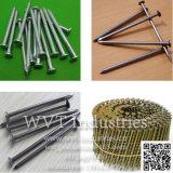 """Le fil Nail Équipement de fabrication de la ligne de production de la machine pour la longueur des ongles : 2-4""""/Diamètre: 2.8-4.5mm"""