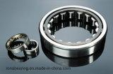 SKF NF1015 zylinderförmiges Rollenlager für Geräte
