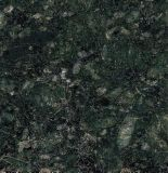 De opgepoetste Tegels van de Keuken van de Badkamers van de Muur van de Tegels van het Graniet van de Vlinder Verde Groene