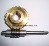 Ajuste la transmisión de la Unidad de piezas y engranajes de gusano Worm