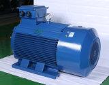 Y de Elektrische Motor In drie stadia 132kw van de Hoge Efficiency van de Reeks