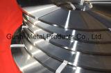 Pvc Met een laag bedekt Roestvrij staal die Band vastbinden