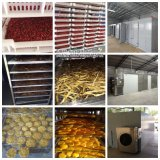 Prix bas de machine de séchage de poissons/d'étuve industrielle