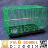 Nouveau design Iron Bird Cage