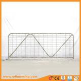 Cancello rurale galvanizzato dell'azienda agricola di soggiorno del TUFFO caldo N