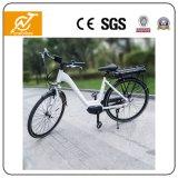 後部ラックリチウム電池が付いている36V 350W様式の電気自転車