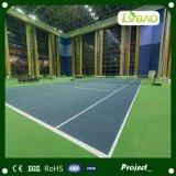 Het gekleurde Tapijt van het Gras voor Futsal