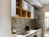 光沢度の高い線形様式のホーム台所のための白い食器棚