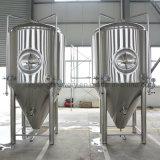 1000L de Duitse Vergistende die Apparatuur van het Bier van de Technologie in China wordt gemaakt
