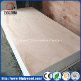Contre-plaqué de film publicitaire du matériau de construction de construction de porte de mur de Chambre en bois OSB