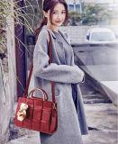 Signora d'impionbatura Handbag di modo dell'unità di elaborazione con i sacchetti d'attaccatura della bambola (WDL0203)