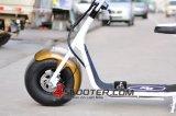 판매에 중국 주문 기동성 800W 무브러시 모터 전기 스쿠터 Harley 시 코코야자 전기 스쿠터 Es8004