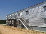 Большая дом цыпленка размера 50000 стальной структуры слоев дома слоя
