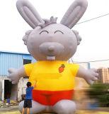 만화 인물 팽창식 Cartooninflatable 마스코트 (CT-010)를 광고하는 축제