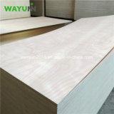 contre-plaqué d'Okoume de bois de construction stratifié par faisceau d'eucalyptus de 18mm pour des meubles