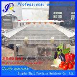Machine à laver les légumes fruits pulvériser la rondelle de pression