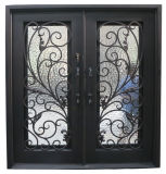 Porte extérieure de premier fer carré avec le modèle en verre Tempered Nice