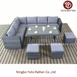Furniture di vimini Sofa Set con Table (1504)