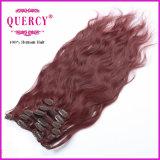I capelli umani Remy di 100% fermano i capelli con una graffetta