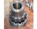 Accoppiamento flessibile del motore di Lz per la macchina del motore