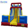 Adult Water Slide Inflatable Kids Slides