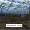 Durable and Stable Galvanized Steel Frame Venlo PC Greenhouse