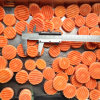 2015 IQF Frozen Vegetables New Red Ripple Carrots