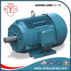 CE 0.55 ~ 200kw Tefc ~IP55 Three Phase Motor, Aysnchronous Motor, Electric Motor