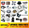 Over 5000 Items Auto Parts Nissan Truck Parts