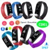 ECG Smart Bracelet with Heart Rate and Blood Pressure Monitor CD01