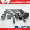 Steel Bolt, Galvanized Hex Bolt and Nut