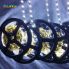 White Color 2835 LED Chips LED Channel Light