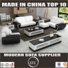 Modern Home Furniture Leather Sofa for Home