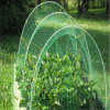 Plastic Netting for Anti Bird/Anti Insect/Anti Hail