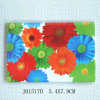 Fridge Magnets with Colourful Daisy Design