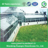 Hot Selling Green House Covered Glass Vegetable Glass Greenhouse