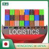 Sea Freight Shipping From HK to Japan Tokyo / Yokohama / Osaka / Kobe / Nagoya