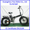 20 Inch Italy Fat Tire Folding Electric Bike