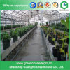 Greenhouse Used Complete Hydroponic System, Hydroponic Greenhouse